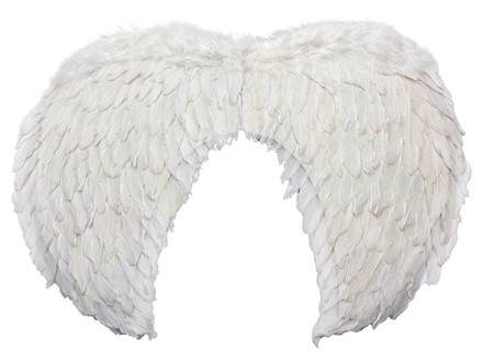 WINGS WHITE 60 X 44 CM